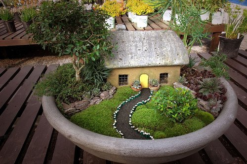A Garden Fit for a Fairy Makely