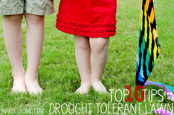 Top 10 Tips for a Drought Tolerant Lawn via MakelyHome.com
